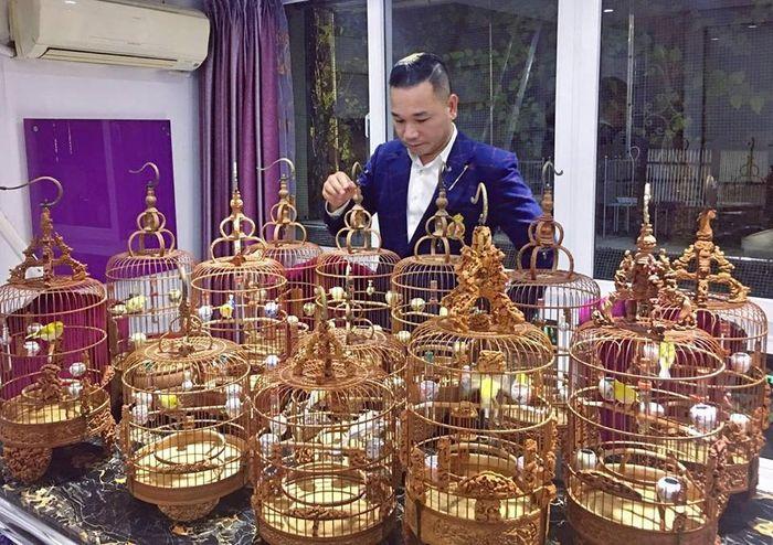 Đàn chim bạc tỷ của 'ông vua chim cảnh Việt Nam'