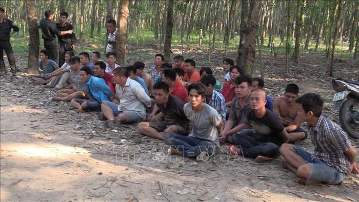 ... Công an tỉnh Bình Dương bất ngờ đột kích vào một trường gà nằm sâu  trong rừng cao su, tại phường Tân Định, thị xã Bến Cát, tỉnh Bình Dương.