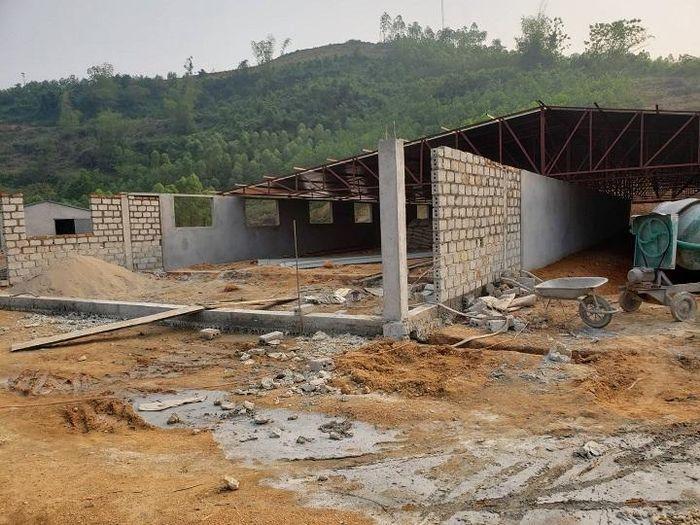 Sơn Dương - Tuyên Quang: Chính quyền 'làm ngơ' cho trang trại sai phạm? - Ảnh 1