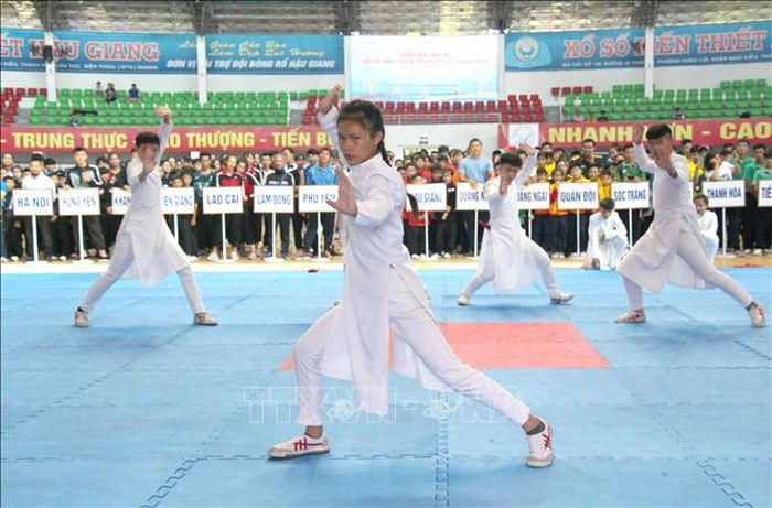 Báo Tin Tức TTXVN: Khai mạc Giải vô địch Trẻ và Thiếu niên Võ cổ truyền toàn quốc