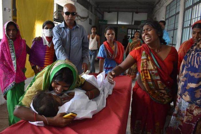 31 trẻ em Ấn Độ thiệt mạng vì chất độc trong quả vải