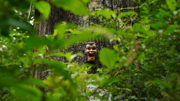 Đường leo núi đầy thi thể búp bê khiến du khách rùng mình