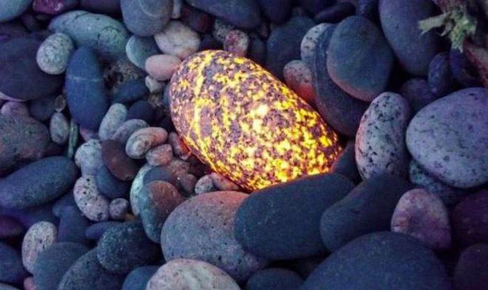 Clip hòn đá bé bằng quả trứng nhưng có giá trị 'khủng'